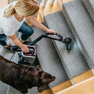 Shark Rotator TruePet Upright TruePet Mini Motorized Brush