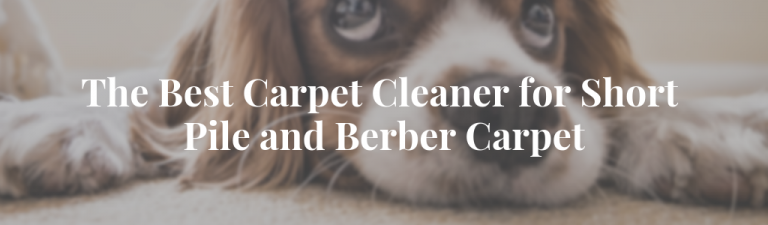The Best Carpet Cleaner for Short Pile and Berber Carpet, comparison, Vacuum Fanatics